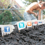 10 datos interesantes sobre las Redes Sociales para tu negocio o empresa, que debes conocer