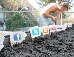 Blogs & social media