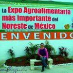 Proveedores locales en Reynosa